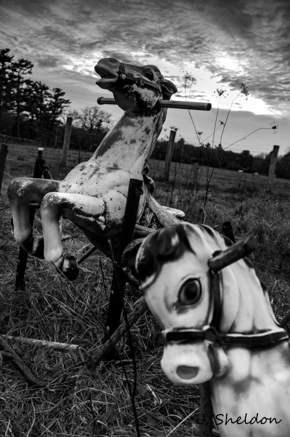 Horses 1(s)