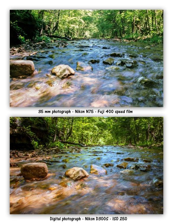 creek film and digital 1.jpg