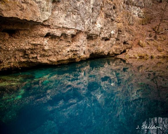 Blue Springs 5(s)